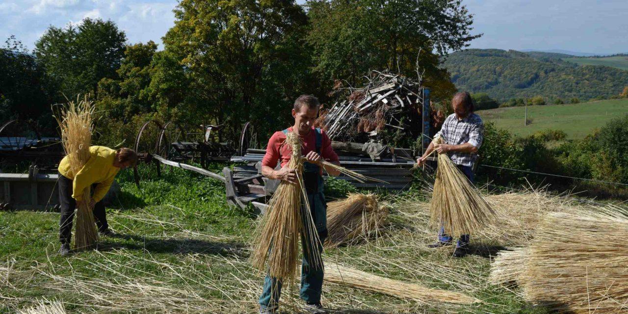 Slovakia National Trust Working Holidays Thatchers